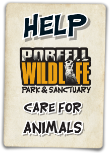 Help Porfell Wildlife Park & Sanctuary