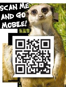 porfell-meerkat-QR